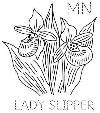 MN-LADYSLIPPER