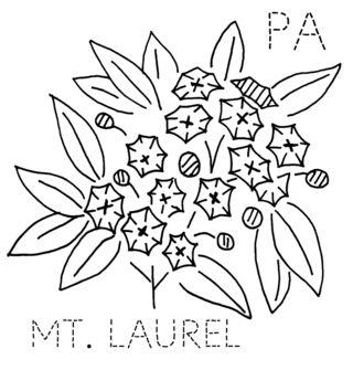 PA-MTLAUREL