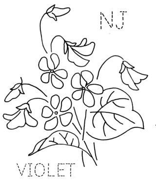 NJ-VIOLET