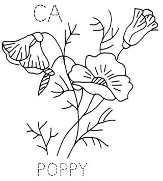 CA-POPPY