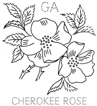 GA-CHEROKEEROSE