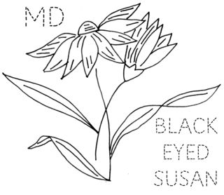 MD-BLACKEYESUE