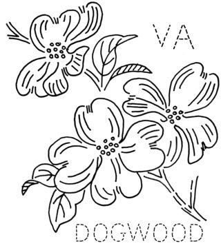 VA-DOGWOOD