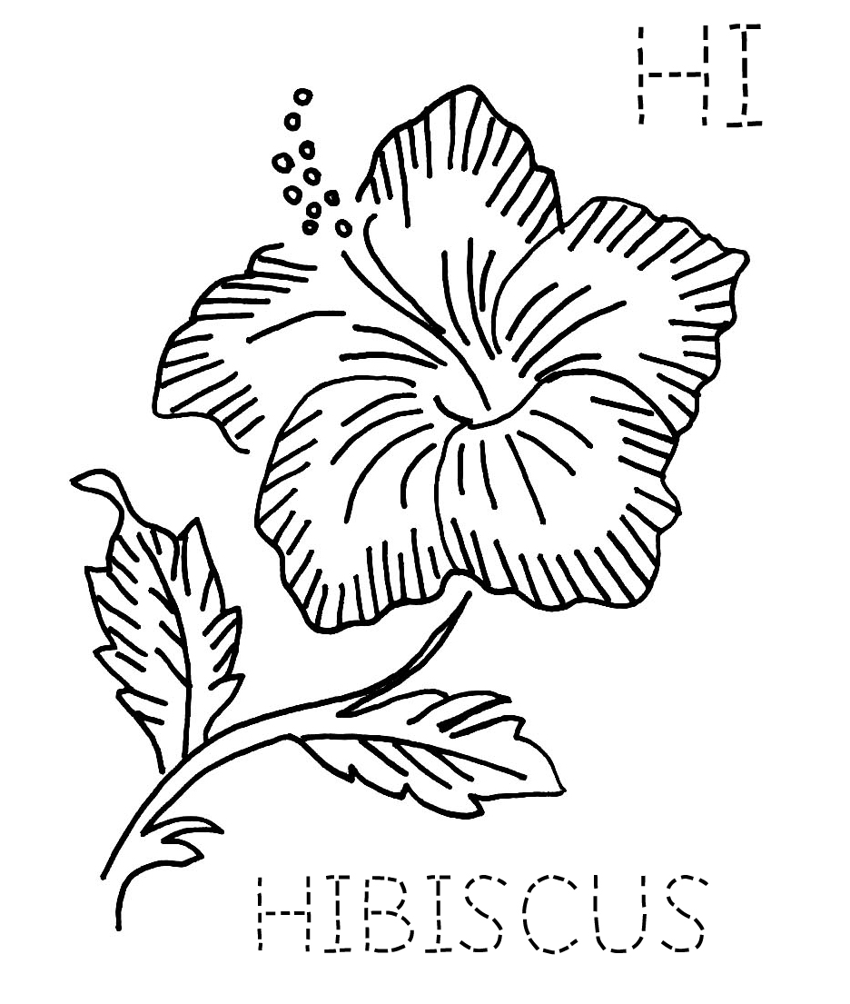 yellow hibiscus coloring pages - photo#35
