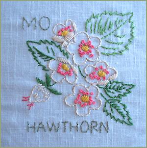 Hawthorn2