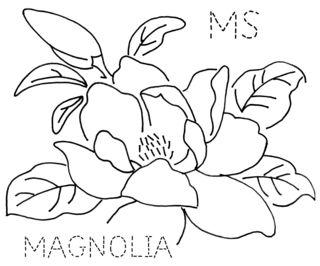 MS-MAGNOLIA