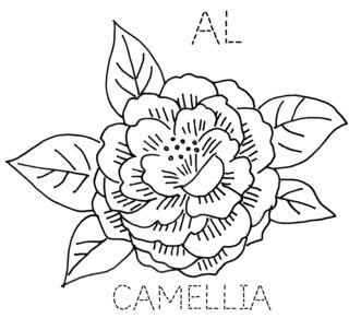 AL-CAMELLIA