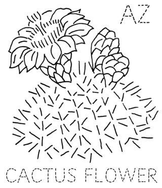 AZ-CACTUS