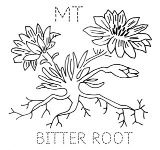 MT-BITTERROOT
