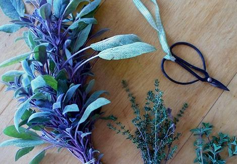 Herbs10-12