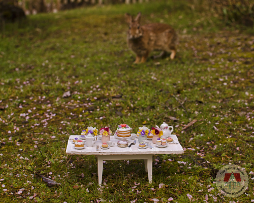 Spring-tea-party-rabbit