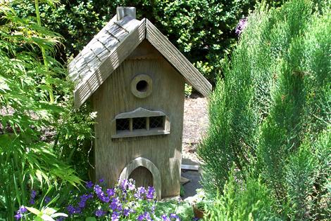 Birdhouse_2355