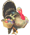 Turkey_with_basket